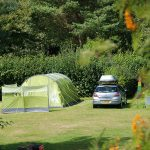 Camping at Oakdown Holiday Park in Devon