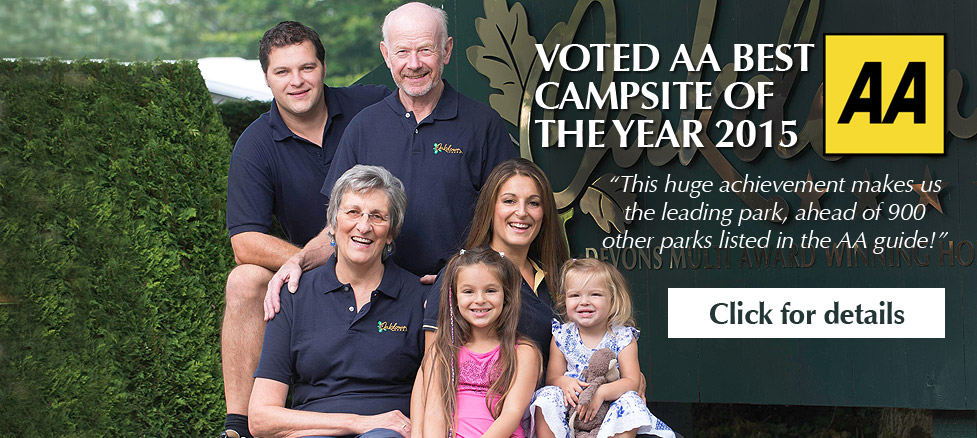Voted AA Campsite of the year 2015